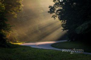 """Light Shafts at Sleepy Gap, Milepost 397.3"" by Deborah Scannell Photography"