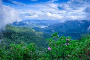 """""""Parkway View of the Asheville Watershed"""" by Jason Penland"""