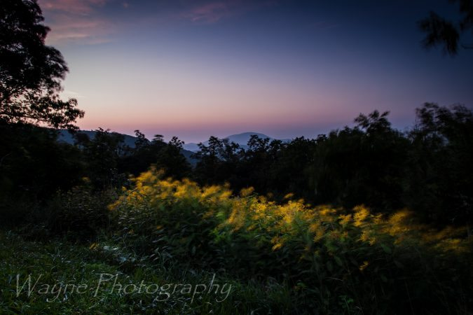 """Fork Mountain Overlook Blue Ridge Parkway Milepost 23"" by Wayne Photography"