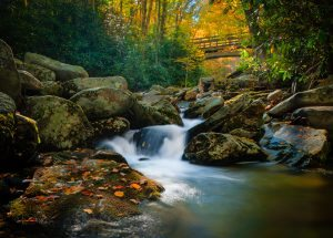 """""""Boone Fork Creek, Milepost 300"""" by Miles Smith"""