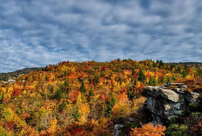 """Rough Ridge Trail"" by Paul Cory Photography"