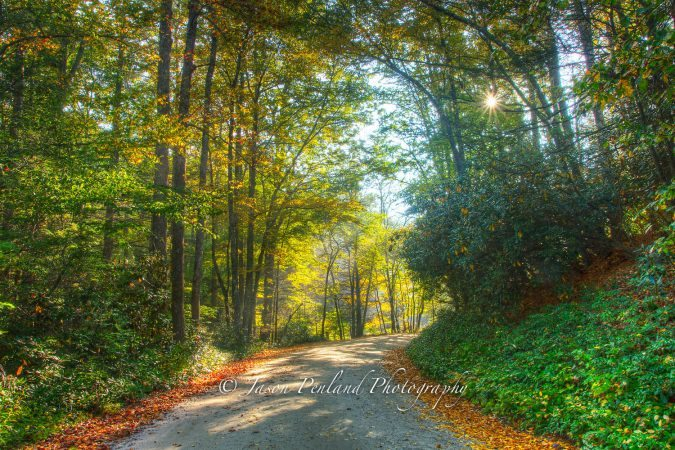 """October Road at Mt. Mitchell"" by Jason Penland Photography"
