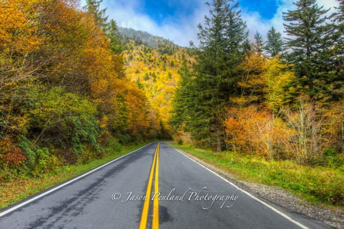"""Peak Color At Mt. Mitchell State Park"" by Jason Penland Photography"