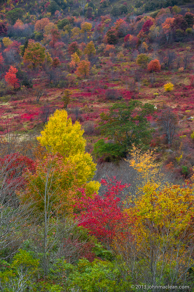 """Graveyard Fields – Milepost 439.0"" by John MacLean Photography"