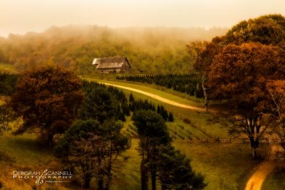 """Virginia Farm at Milepost 27"" by Deborah Scannell Photography"