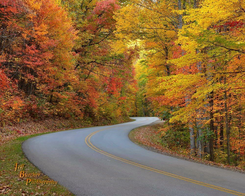 """Parkway Color near Asheville"" by Jeff Burcher Photography"