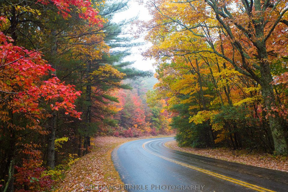 """""""Fall Colors at Parkway Milepost 381"""" by William Trinkle Photography"""