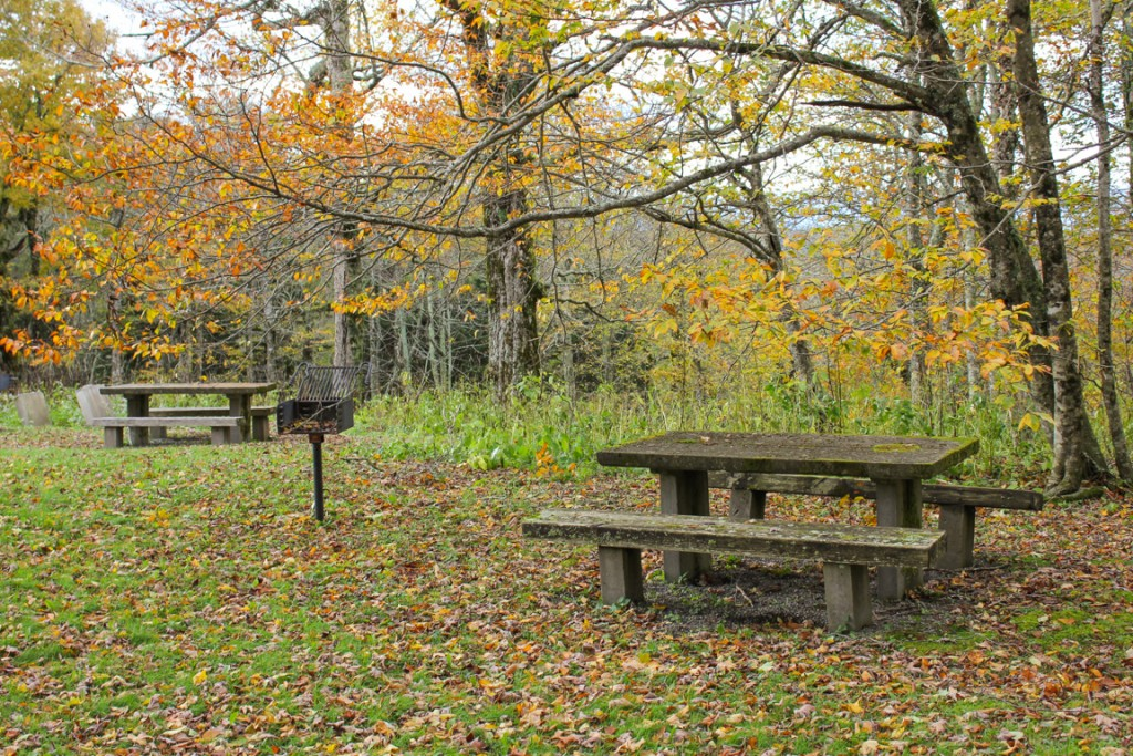 Fall Color In The Craggy Gardens Area October 5 2015 Blue Ridge Parkway Daily Maps