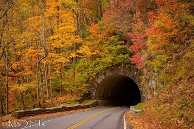 """Newfound Gap Road, Late Fall"" by M&D Hills Photography"