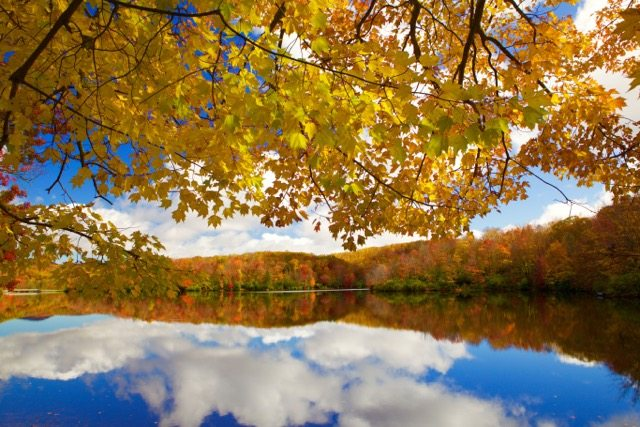 """Fall Reflections at Price Lake"" by J. Scott Graham"