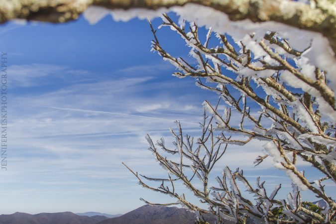 """Icy Trees at Craggy Pinnacle, Milepost 364.1"" by Jennifer Mesk Photography"