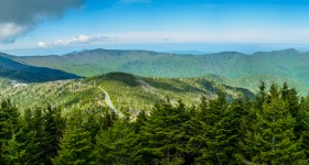 Summer at Mt. Mitchell