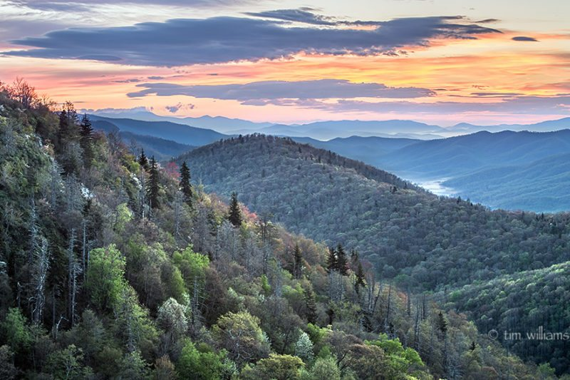 """""""Early Morning at East Fork Overlook, Milepost 418.3"""" by Tim Williams"""