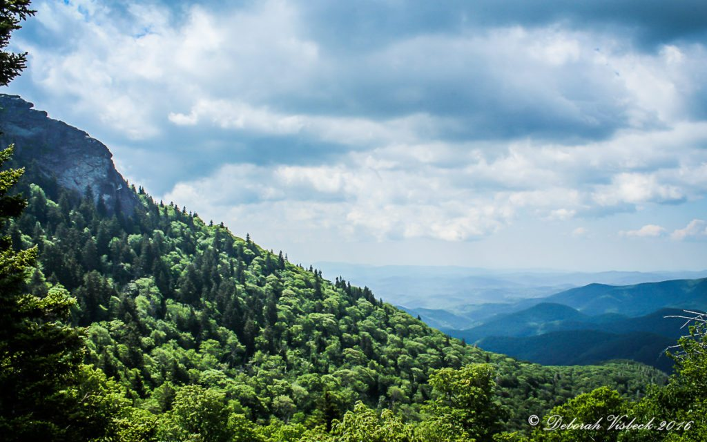 """Devil's Courthouse Overlook, Milepost 422.4"" by Deborah Visbeck"