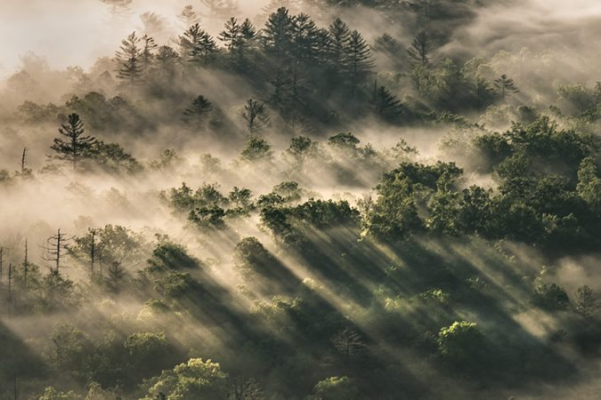"""""""Morning Rays at Pounding Mill Overlook"""" by Tim Williams"""