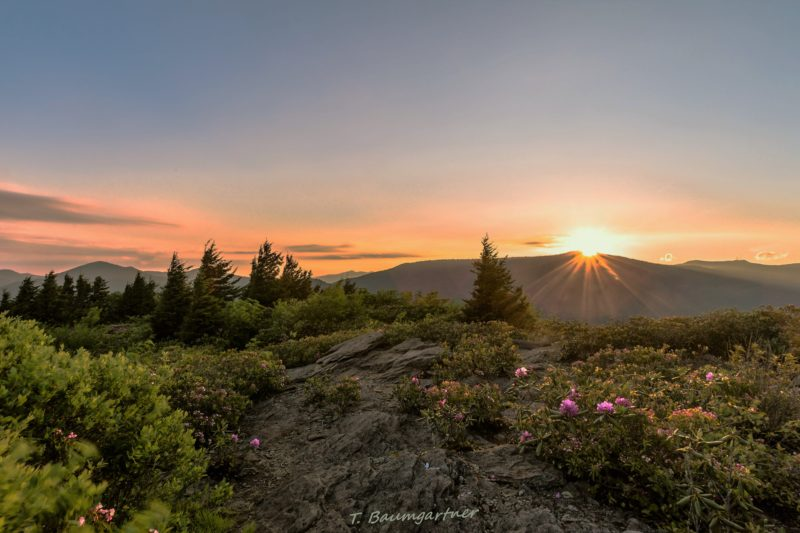 """Sunrise at the Pinnacle of Graybeard Overlook, Milepost 363.4"" by Tim Baumgartner"