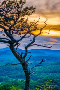 """""""View from Flat Rock, Milepost 308.3"""" by Paul Cory Photography"""