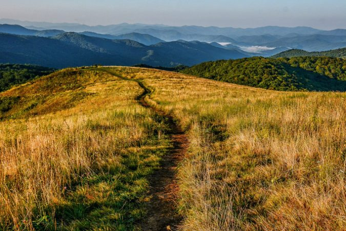 """Max Patch Trail in the Pisgah National Forest"" by Daniel Plotts"