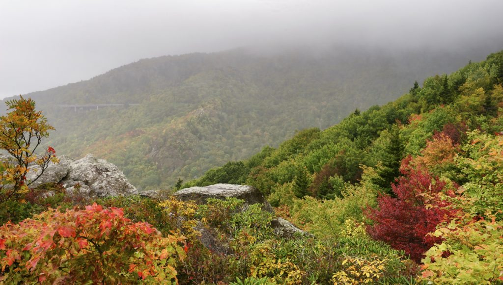 """Autumn Fog at Rough Ridge Trail, Milepost 302.8"" by Craig Zerbe"