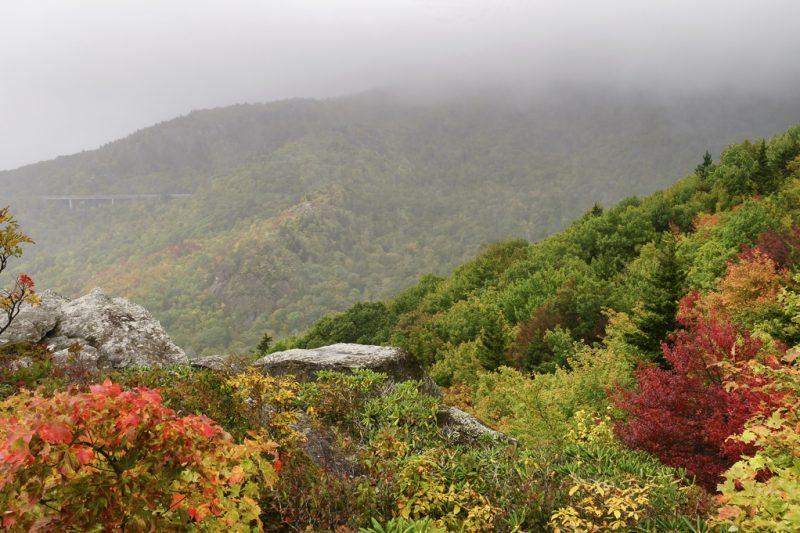 """""""Autumn Fog at Rough Ridge Trail, Milepost 302.8"""" by Craig Zerbe"""