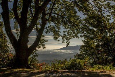 """Chestnut Cove Overlook, Milepost 398.3"" by Jennifer Mesk Photography"