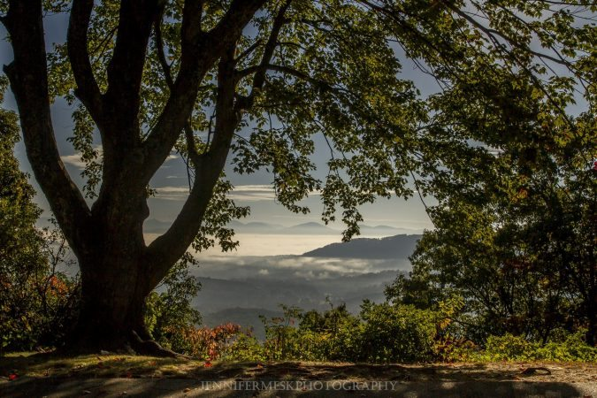 """Chestnut Cove Overlook, Milepost 398.3"" by Jennifer Mesk Photography"