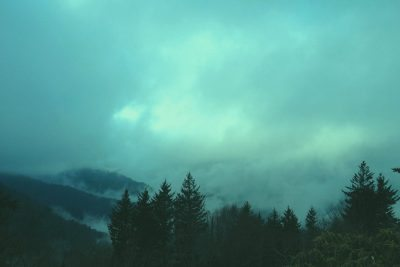 """Fog over Waterrock Knob, Milepost 451.2"" by Teri Leigh Teed"