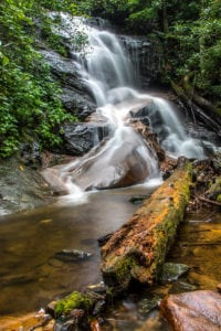 """""""Log Hollow Falls in Pisgah National Forest"""" by HD Carolina"""