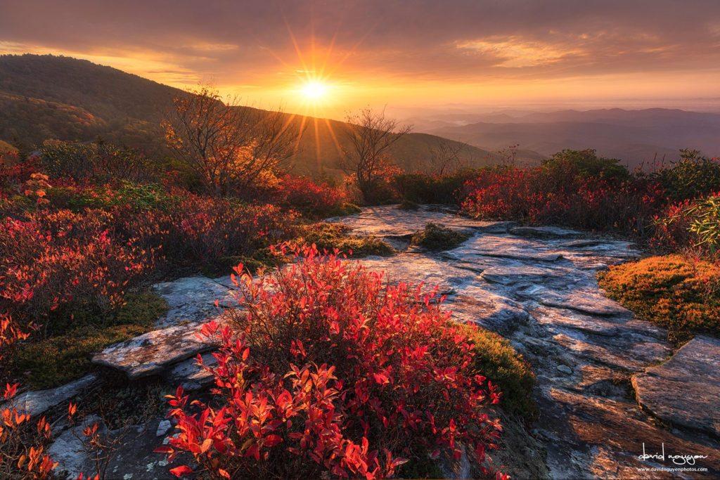 """Sunrise at Rough Ridge Trail, Milepost 302.8"" by David Nguyen"