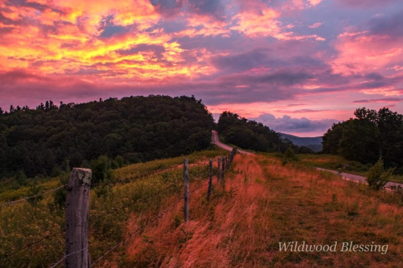"""""""Across from Thunder Hill Overlook, Milepost 290.4"""" by Lisa Gregory"""