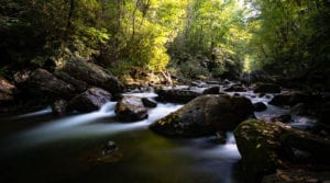 """Early Fall on the Pigeon River"" by Matt Wallace"