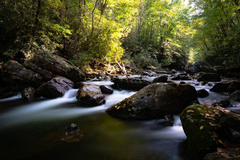"""""""Early Fall on the Pigeon River"""" by Matt Wallace"""