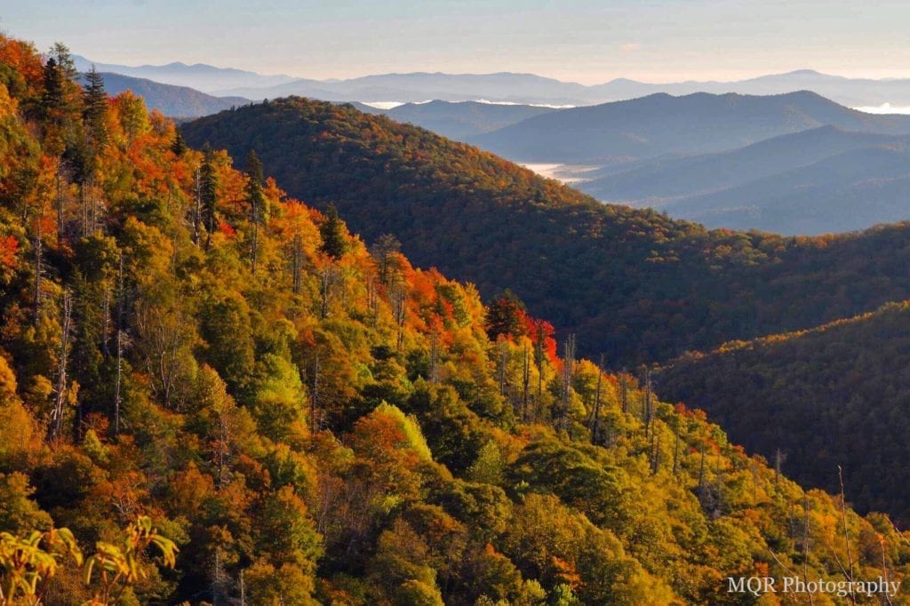 """""""Fall at East Fork Overlook, Milepost 418.3"""" by Mandy Quinzi"""