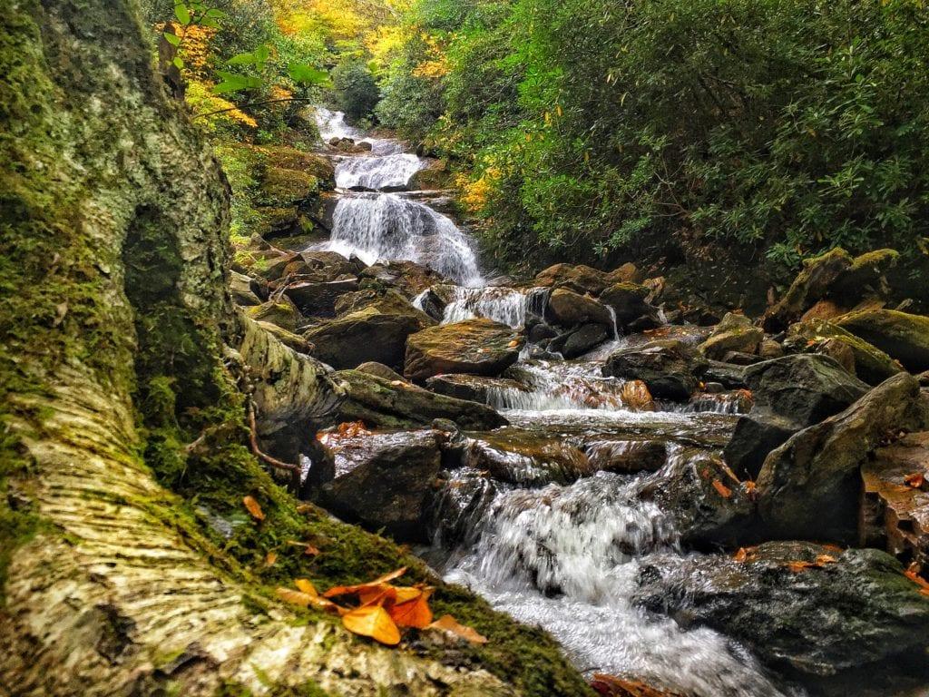 """""""Lower Sam Branch Falls, Milepost 423"""" by Todd Roy"""